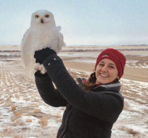rebecca-mcabe-owl-img